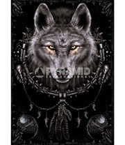 Spiral Wolf Dreams Poster